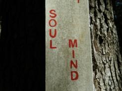soul mind
